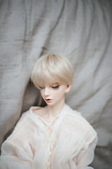 Rue (fever _) Tags: bjd abjd doll switch pavian