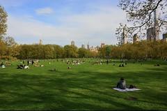 Central Park (jomondesir) Tags: naturephotography nature pretty cityscape serenity manhattan newyork nyc springtime spring beautifulday picnic bluesky sunny outdoors grass