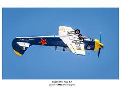 Yakovlev Yak-52 (Ignacio Ferre) Tags: fio fundacióninfantedeorleans cuatrovientos lecu madrid españa spain yakovlev yak52 yakovlevyak52 avión aviation aviación avioneta spotting acrobatic acrobático aircraft airplane airshow nikon