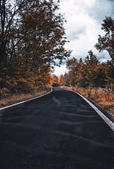 #road#strada#landscape#paesaggio#tree#alberi#sky#cielo#italia#italy#campagna#line#linea#black#nero#yellow# (cremascosabrina) Tags: road strada landscape paesaggio tree alberi sky cielo italia italy campagna line linea black nero yellow