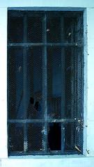 Breaking Bad Nr.2 (Dan Daniels) Tags: windows uglyartsy screens glass brokenglass oldarchitecture breakingbad nikon nikond90 audand riehen kantonbaselstadt schweiz cantonbaselstadt switzerland