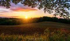 Bennague CC 21.05.19 (Thaurin Geoffrey Photographie) Tags: france ariège sun sunset light start sunlight lightstart paysage landscape coucher soleil nuage cloute ciel sky nature arbre champs vert color sony a7ii 1635 love amateur me photoshop lightroom grandangle