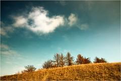 Weiße Wolke (linke64) Tags: thüringen germany deutschland wolken himmel häuser bäume berge baum natur landschaft w