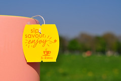 Sip Savor Enjoy (Martyn.Hayes) Tags: stilllife outdoors park trees grass drink tea herbaltea yellow pink cup mug hot hotdrink soothing summer tealable teabag teabags sip savour enjoy sipsavourenjoy bluesky macro closeup upclose