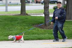 IMG_9150 (i_am_lee_sam) Tags: 2019 care strut for strays charity dog walk skokie il