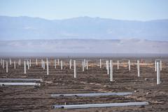 Foto8 (Intendente de Tarapacá) Tags: intendente quezada y ministra de energía participaron en la instalación los 1ros paneles fotovoltaicos granja solar 22052019