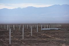 Foto4 (Intendente de Tarapacá) Tags: intendente quezada y ministra de energía participaron en la instalación los 1ros paneles fotovoltaicos granja solar 22052019