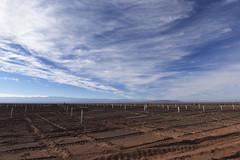 Foto3 (Intendente de Tarapacá) Tags: intendente quezada y ministra de energía participaron en la instalación los 1ros paneles fotovoltaicos granja solar 22052019