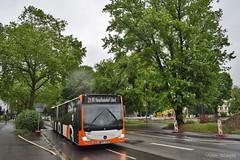 831 - 24 - 21.05.2019 (VictorSZi) Tags: germany rnv transport publictransport nikon nikond5300 mai may deutschland spring primavara bus autobuz mercedes mercedescitaro mercedesbenz mercedesbenzcitaro