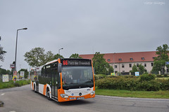 6264 - 66 - 20.05.2019 (2) (VictorSZi) Tags: germany rnv transport publictransport nikon nikond5300 mai may deutschland spring primavara bus autobuz mercedes mercedescitaro mercedesbenz mercedesbenzcitaro