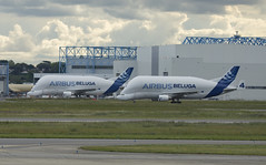 Belugas (Lucas31 Transport Photography) Tags: aviation planes aircraft toulouse lde airbus beluga