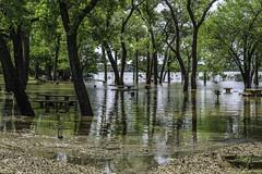 Salt Plains Reservoir Flood (J K German) Tags: saltplains lake nature oklahoma water flood picnictables underwater trees