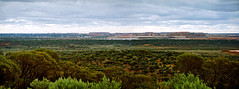 "8 February 1998 - KCGM Super Pit gold mine tailing ""mountains"" next to city of Kalgoorlie-Boulder, Western Australia, Australia (aussiejeff) Tags: kalgoorlie boulder mine wa landscape tailing australia jeffc aussiejeff 90s westernaustralia"