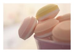 Macro Mondays : The bouquet of lollipops / Le bouquet de sucettes (Tostaky2) Tags: macro candy sucre sucrerie sucette bonbon sweet pastel lollipop macromondays