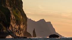 Windy sunset (Jerzy Orzechowski) Tags: wind silhouette sunset reflections rocks water birds sky waves iceland yellow orange sea