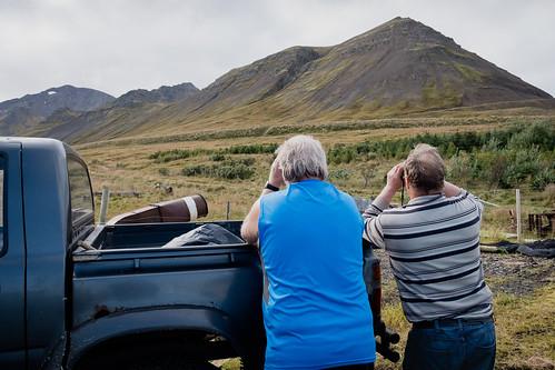 "Bræður líta eftir fé • <a style=""font-size:0.8em;"" href=""http://www.flickr.com/photos/22350928@N02/43741903525/"" target=""_blank"">View on Flickr</a>"