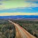 Taylor Highway - Alaska