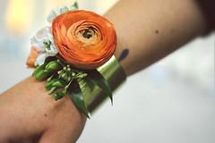 tcwa-18 (FestivitiesMN) Tags: tcwa gold cuff corsage peach ranunculus wrist flowers weddingfair seededeucalyptus eucalyptus floralbracelet