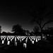 Big Dipper over Little Rock National Cemetery.