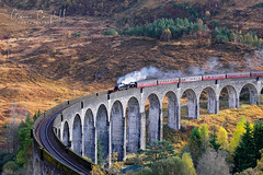 Jacobite Express (gcfotographos) Tags: alba scotland harrypotter steamtrain glenfinnan light landscape uk britain europe fllm filmscene ngc fuji fujifilm xt2 sunlight hill trees movie hogwarts jacobiteexpress jacobite train tree viaduct mountain sky forest ittakesalottolaughittakesatraintocry