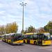 BVG / Mercedes-Benz Citaro EN09 n°2232, Solaris Urbino 18 III GN05 n°4179 et Scania Citywide LFA GN16 n°4615