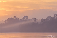Misty morning! (karindebruin) Tags: borneo holiday maleisie kinabatangan river rivier water mist fog trees bomen wolken clouds zonsopkomst sunrise