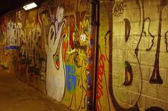 239 Paris en Mars 2019 - Passage piéton sous les voies de la Gare Montparnasse entre les rues Jacques Baudry et Vercingétorix (paspog) Tags: paris france mars march märz 2019 streetart mural murals fresque fresques graffitis tags