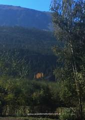 El otoño entre nosotros !!! Los estamos esperando !!! . . www.carpediemelbolson.com.ar  @carpediem_elbolson @carpediemelbolson @carpediem.cabanasysuites @turismoelbolson #ElBolsonTodoElAño #TeEstamosEsperando #quieroestarahi #cabañascarpediem #cabañas #al (Cabañas & Suites) Tags: alojamiento patagonia turismoelbolson bestvacations travelers bienestar comarca elbolson suites instagram surargentino carpediem elbolsontodoelaño vacaciones viviargentina argentina teestamosesperando patagoniaargentina turismoargentina holidays visitargentina instatrip comarcaandina paisaje quieroestarahi cabañascarpediem turismo cabañas travel montañas