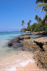 IMG_7347.jpg (Dhammika Heenpella / CWSSIP Images of Sri Lanka) Tags: මුහුද ශ්රීලංකාව matara srilanka holiday sea dhammikaheenpella ශ්රීලංකාවේෆොටෝ ධම්මිකහීන්පැල්ල travel outdoor imagesofsrilanka ශ්රීලංකාවේචායාරූප polhenabeach පොල්හේනමුහුදුවෙරළ මාතර traveldestination placesofinterest