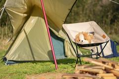 Narita Yume Bokujo Camp (yukilanieve) Tags: narita 成田 chiba 千葉 japan sony a7ii α7ii camp camping
