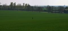 Mais que fait cette homme au milieu du champs ?! ^^ (Πichael C.) Tags: 140419 randonnée châtel st germain et plateau de rozérieulles rando balade promenade nature metz 57 moselle hike