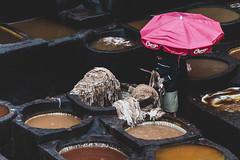 Chouara #4 -Fès (Jethro_aqualung) Tags: nikon d800e jethroaliastullph marocco fez fès concerie chouara tannery tanneries people leather colors