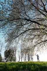 Nature connection (Nicola Pezzoli) Tags: val gandino seriana bergamo italia italy nature spring leffe ceride san rocco connection man silhouette glow plant flowers