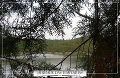 Herdade das Templarias (Herdade das Templarias) Tags: herdadedastemplarias castelodebode abrantes tomar santarém santarem portugal europe lake