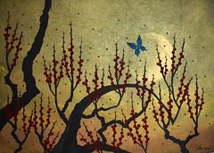 紅梅 - Ume (清水みのり - Artist) Tags: minori shimizu origami kyoorigami ume japan giappone art 清水みのり 日本画 梅 紅梅 京おりがみ 折り紙 日本 アート 蝶