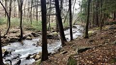 Moose Creek  20190408_133942 (PRS North Star) Tags: streams mountainstreams fishingstreams pristine moosecreek waterfalls