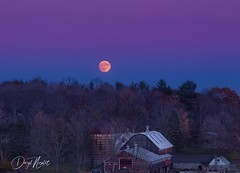 Supermoon (daryl nicolet) Tags: moon supermoon super blood bloodmoon fall colors yellow green grass barm farmhouse silo blue lavender canon 5dmiii canon5dmiii 5dm3 300mm kit lens daryl nicolet dnicpix red