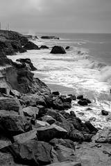 Santa Cruz (reddott2012) Tags: leica monochrom m246 santa cruz california summicron 50mm apo 28mm blackwhite bw beach