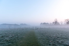 20190330 (Homemade) Tags: frost morning spring dawn sunrise grove wantage nikon2470mmf28 nikkor2470mmf28 oxfordshire southoxfordshire
