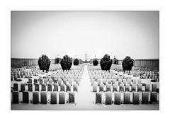 Have you news of my boy Jack ? (Scubaba) Tags: europe france pasdecalais noirblanc noiretblanc bw blackwhite cimetière graveyard neige snow