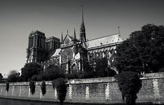 París - Catedral de Notre Dame (Garciamartín) Tags: arte arquitectura artegótico medieval parís europa patrimoniohumanidad garciamartín nino catedral notredame