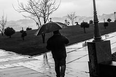 Atardecer gris, mañana roja, saca el paraguas que te mojas.#canon#insta#instadaily#fotografía#blancoynegro#blackandwhite #bnw #monochrome #instablackandwhite #monoart #insta_bw #bnw_society #bw_lover #bw_photooftheday #photooftheday #bw #instagood #bw_soc (isaacdeza3) Tags: photooftheday instablackandwhite fineartphotobw bwsociety canon blancoynegro instapickbw monoart blackandwhite bw bwcrew noir bwphotooftheday bwwednesday insta instagood bnwsociety bwstyleoftheday instadaily iroxbw monochromatic fotografía bnw bwlover monotone instabw igersbnw monochrome bwstylesgf