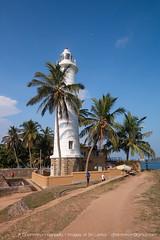 IMG_7613.jpg (Dhammika Heenpella / CWSSIP Images of Sri Lanka) Tags: පහන්කුළුන lighthouse galle කොටුබැම්ම ශ්රීලංකාව historicallandmark srilanka ගාලුකොටුව dhammikaheenpella traveldestination ශ්රීලංකාවේෆොටෝ ධම්මිකහීන්පැල්ල placesofinterest ගාල්ලබලකොටුව gallefort ල්යිට්හවුස් ගාල්ල ශ්රීලංකාවේචායාරූප imagesofsrilanka