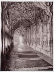 Gloucester Cathedral (Cariadus) Tags: intrepid largeformat 4x5 5x4 film analog analogue blackandwhite bw selfdeveloped fomapan rodinal silvergelatin print gloucestercathedral ilford warmtoneglossy