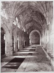 Gloucester Cathedral (Cariadus) Tags: intrepid largeformat 4x5 5x4 film analog analogue blackandwhite bw selfdeveloped fomapan rodinal gloucestercathedral silvergelatin print ilford warmtoneglossy