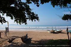 IMG_7173.jpg (Dhammika Heenpella / CWSSIP Images of Sri Lanka) Tags: dhammikaheenpella placeofinterest traveldestination මුහුද ශ්රීලංකාවේචායාරූප ධම්මිකහීන්පැල්ල මුහුදුවෙරළ වැලිගම weligamabeach imagesofsrilanka srilanka placesofinterest ශ්රීලංකාවේෆොටෝ ශ්රීලංකාව fishingboats rafts taprobane island