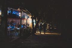 _MG_3214 (waychen_c) Tags: philippines ph visayas centralvisayas bohol provinceofbohol panglaoisland panglao municipalityofpanglao alonabeach coast coastline beach night nightscape tree coconuttree cebutour2019 菲律賓 維薩亞斯 維薩亞斯群島 中維薩亞斯 保和 保和省 邦勞島 邦勞 阿羅那海灘 海灘 2019宿霧旅行 南洋