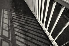 Railing shadows (frankdorgathen) Tags: weitwinkel wideangle alpha6000 sony1018mm alltag banal mundane city urban monochrome blackandwhite schwarzweis schwarzweiss ruhrpott ruhrgebiet dortmund brücke bridge schatten shadow geländer railing