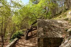 ED:DA190290.XT    ¡ (DAVID.gv65) Tags: selección david65 color chrome alcoi piedra natural montaña arboles natur dgvalor photodgv