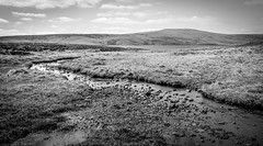 Cow Green . (wayman2011) Tags: colinhart fujifilmxt1 lightroom5 wayman2011 bwlandscapes mono rural reservoirs streams pennines dales teesdale cowgreen countydurham uk